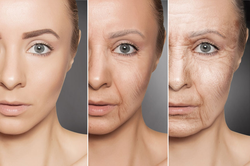 Aging Face Progression